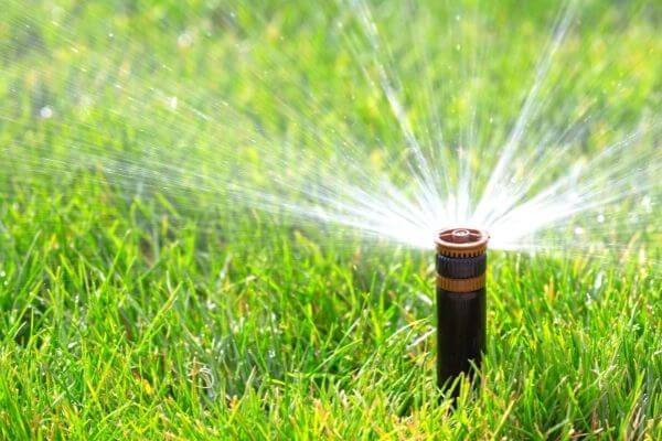 Irrigation Systems Experts Kirkland, WA